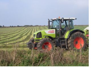 A tractor roaming free